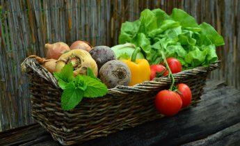 野菜高い 対策
